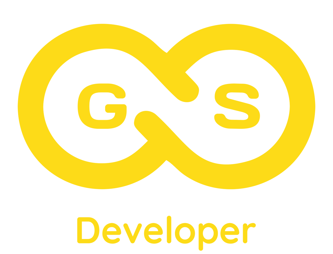 GSdeveloper